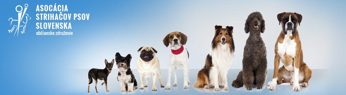 Asociácia strihačov psov Slovenska